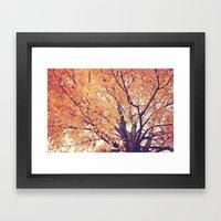 Rich Autumn  Framed Art Print