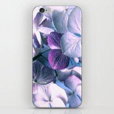 blue love iPhone & iPod Skin