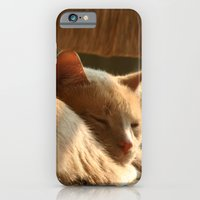 iPhone & iPod Case featuring Cat Nap by Katherine Farah