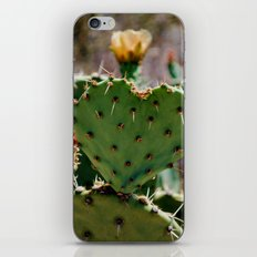 Sonoran Love iPhone & iPod Skin