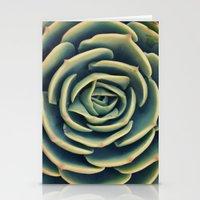 Echeveria x Imbricata Succulent Stationery Cards