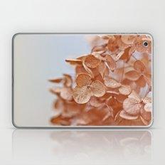 Autumn Hush Laptop & iPad Skin