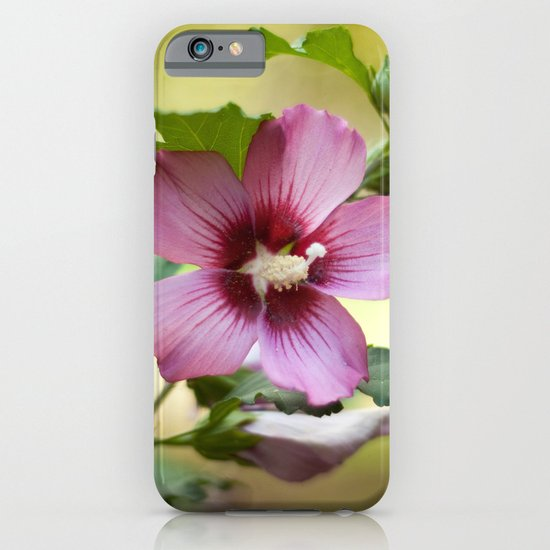 Hardy Hibiscus iPhone & iPod Case