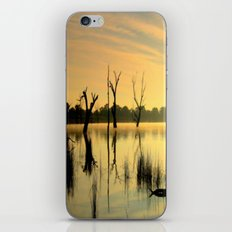 Nature's Beauty iPhone & iPod Skin