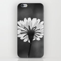 Nature in Monochrome iPhone & iPod Skin