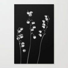 Lily of the Valley Noir Canvas Print