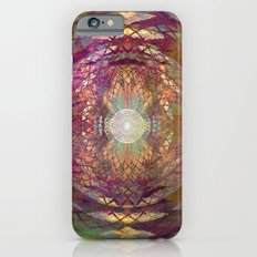 Rainbow Web Slim Case iPhone 6s