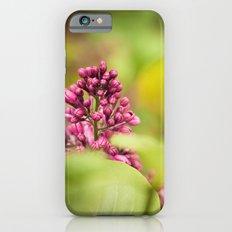 Syringa 2 iPhone 6 Slim Case