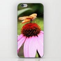 Fallin' Pollen iPhone & iPod Skin