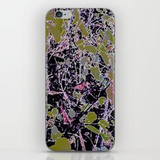 Berry Infusion  iPhone & iPod Skin