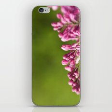 Syringa iPhone & iPod Skin