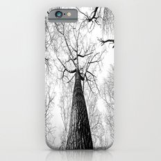 B&W Trees Top iPhone 6 Slim Case