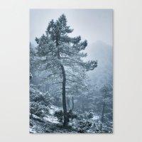 Snowing Tree. Retro Canvas Print