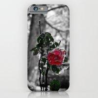 Rose in the snow iPhone 6 Slim Case