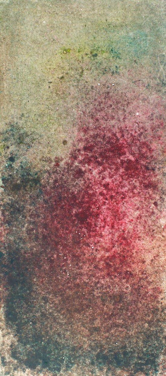 Rash Art Print