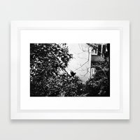 EARLY MORNING, A MESSAGE FOR YOU. Framed Art Print
