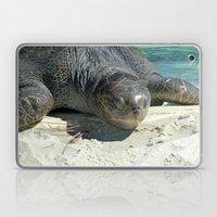 Turtle Ashore Laptop & iPad Skin