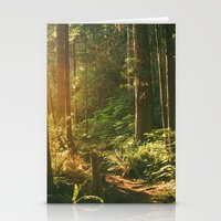 Forest Sunset Stationery Cards