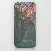 Cactus Life iPhone 6 Slim Case