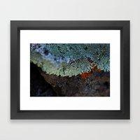 Lichen Ice Framed Art Print