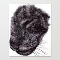 Cat illustration Canvas Print