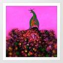 Peacock Bloom Pink Art Print