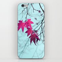 Maple Tree Stars iPhone & iPod Skin