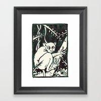 tarsier Framed Art Print