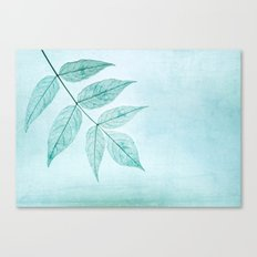 blue fall Canvas Print