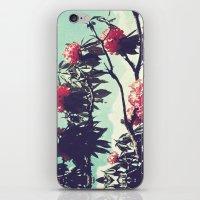 Turquoise Jewels iPhone & iPod Skin