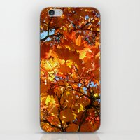 autumn day iPhone & iPod Skin