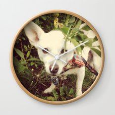 Looking Lobo Wall Clock