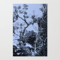 Gnarly. Canvas Print