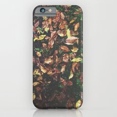 Among the leaves iPhone 6s Slim Case