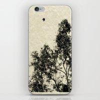 Passing Through iPhone & iPod Skin