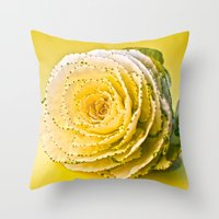 Cabbage Rose  Throw Pillow