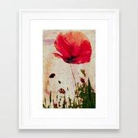 Heavy Poppy Framed Art Print