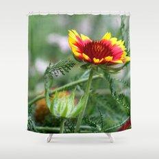 Macro Shower Curtain