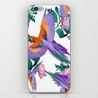 Parrot Paradise (White) iPhone & iPod Skin