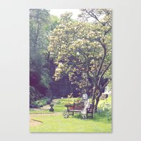 Old Cat Lady Canvas Print