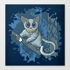 Bush Baby Canvas Print