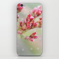 In A Christmas Mood iPhone & iPod Skin