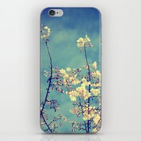 Blossoms On Blue Sky iPhone & iPod Skin