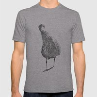 Inquisitive Seagull Mens Fitted Tee Athletic Grey SMALL