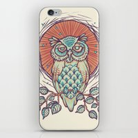 Owl on branch iPhone & iPod Skin