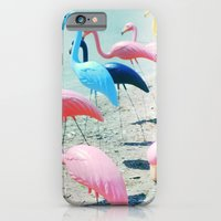 iPhone & iPod Case featuring Flamingo Party by Bella Blue Photography