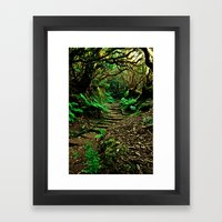 Forest Secrets Framed Art Print