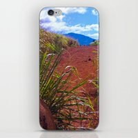 Red Dirt Path iPhone & iPod Skin