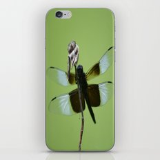 Dragons do fly!!! iPhone & iPod Skin