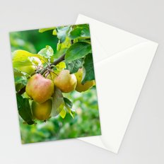 Swedish apples 2 Stationery Cards